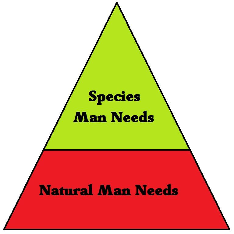 marx hierarcy